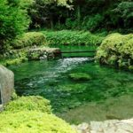 白川水源の写真